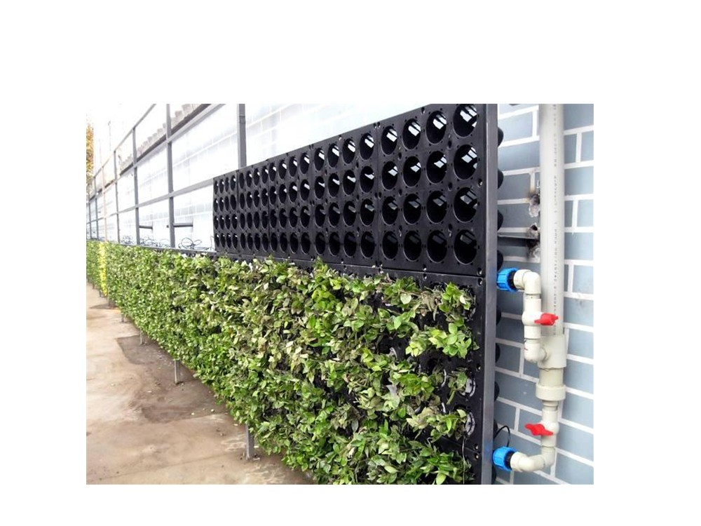 green wall system cfi wp01 the green wall green wall system living wall vertical gardening. Black Bedroom Furniture Sets. Home Design Ideas